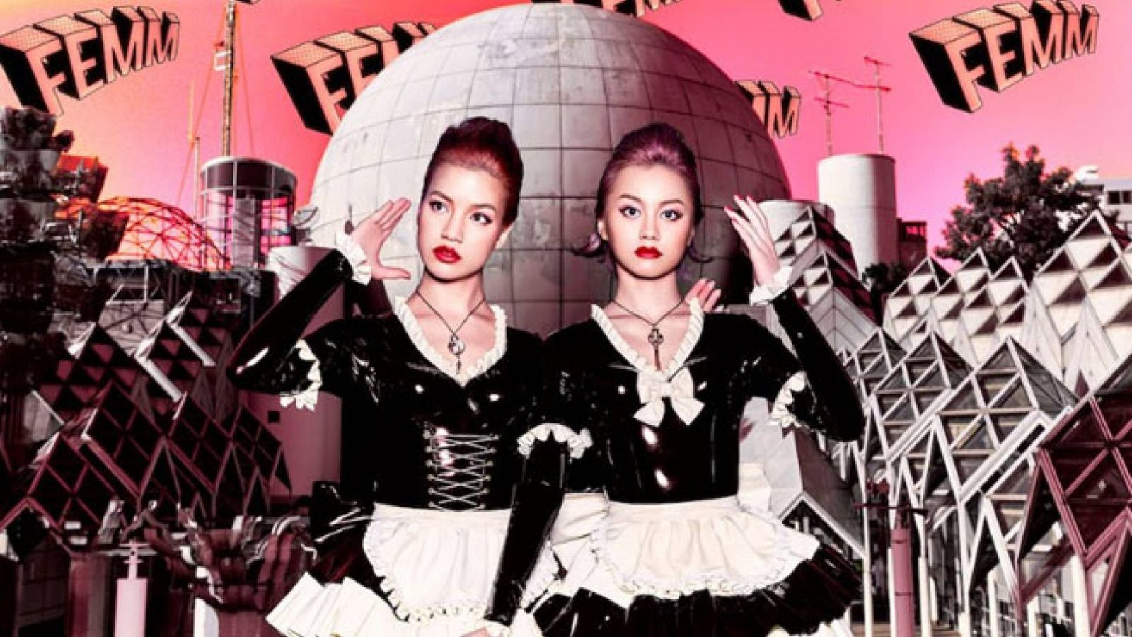 FEMM © FEMM. All rights reserved.