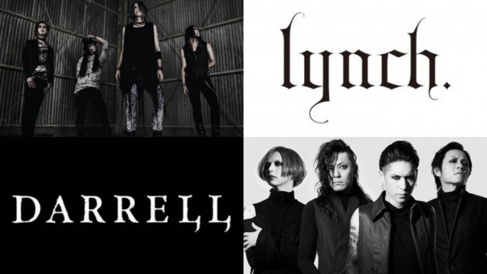 lynch. vs DARRELL © lynch, DARRELL