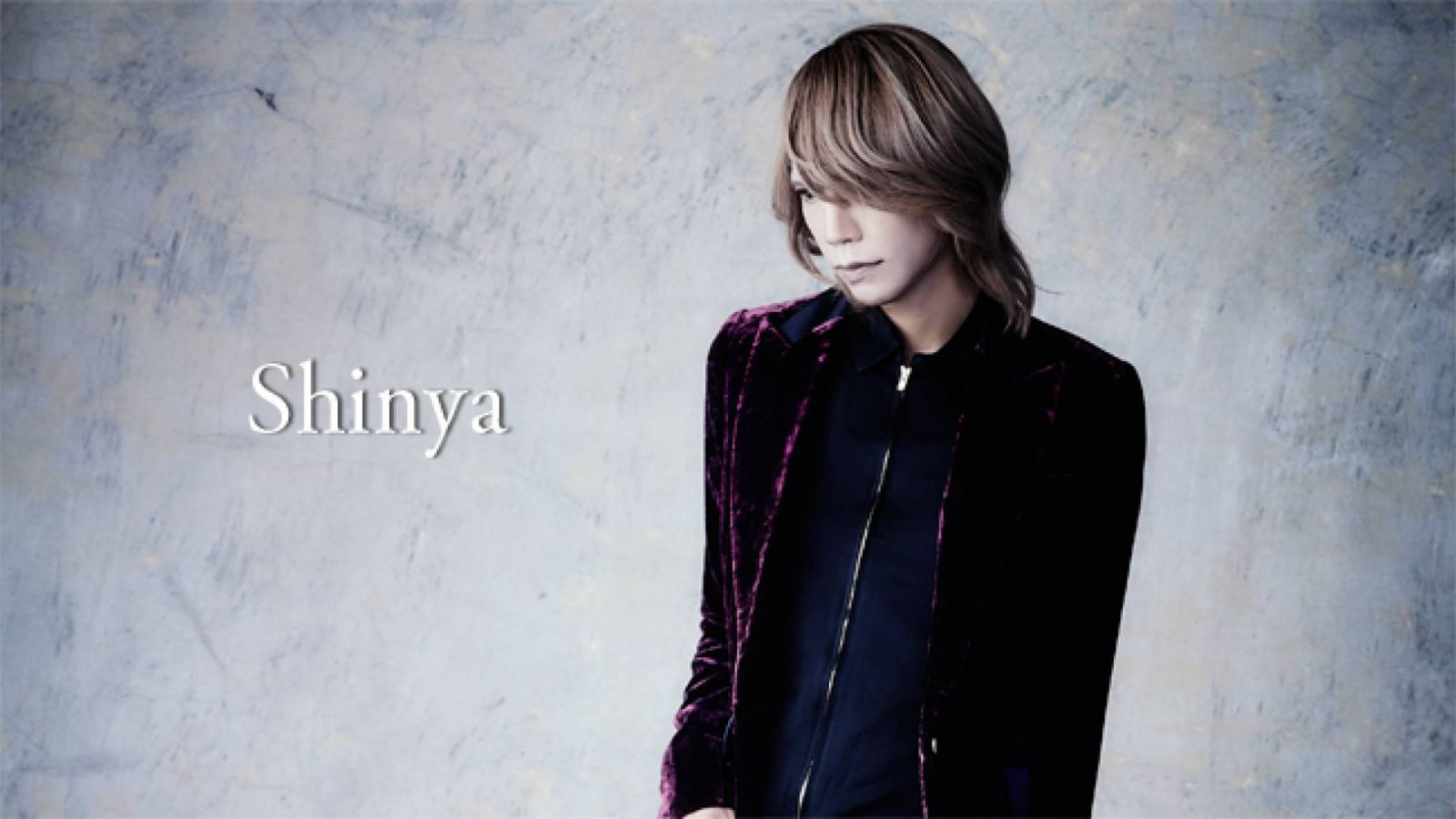 Shinya © sun-krad Co., Ltd.