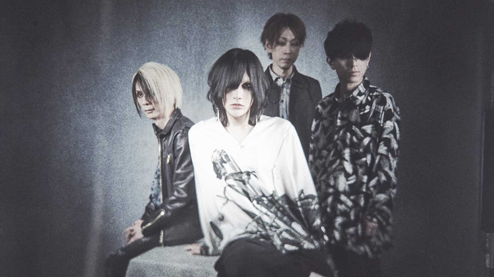 New Single from Plastic Tree © J-ROCK CO.,LTD. All rights reserved.