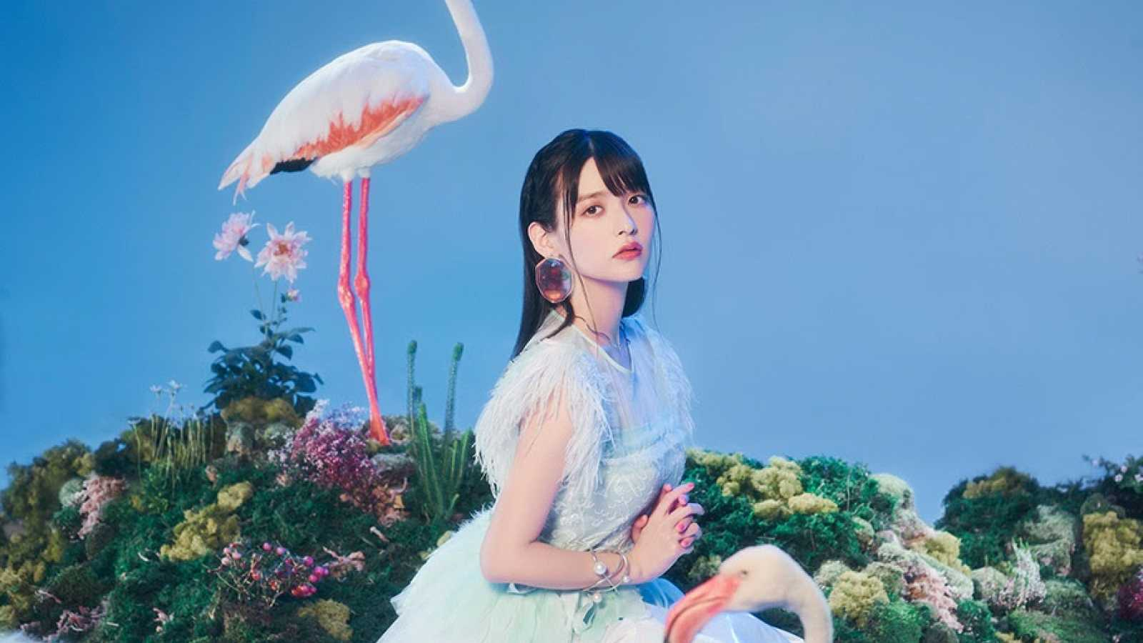 Nouveau single de Sumire Uesaka © KING RECORD CO., LTD. All rights reserved.