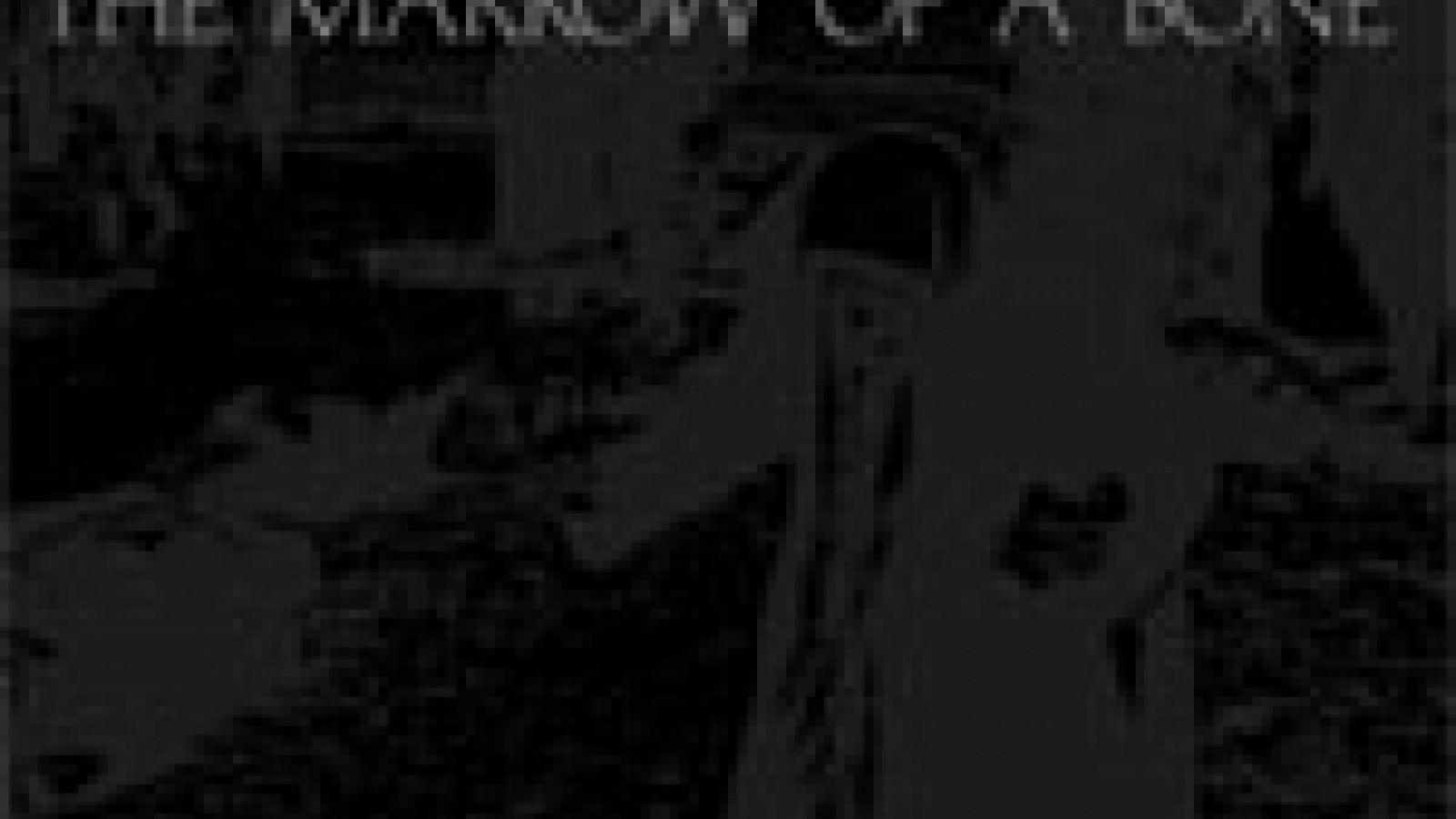 Dir en grey - The Marrow of a Bone © Dir en grey