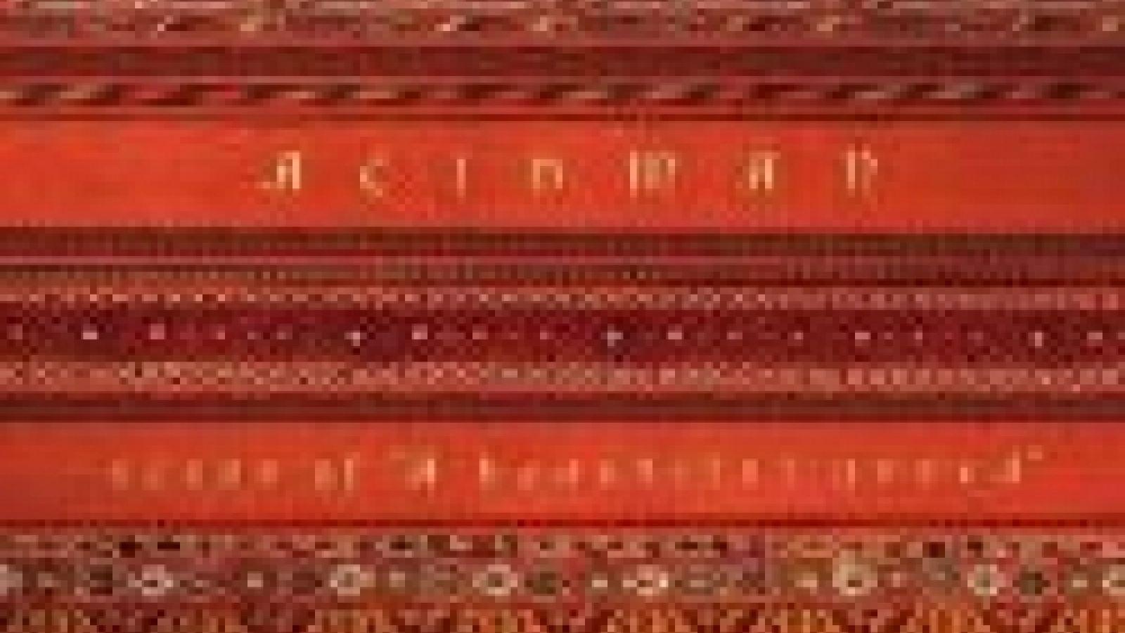 ACIDMAN PV Collection DVD © JaME