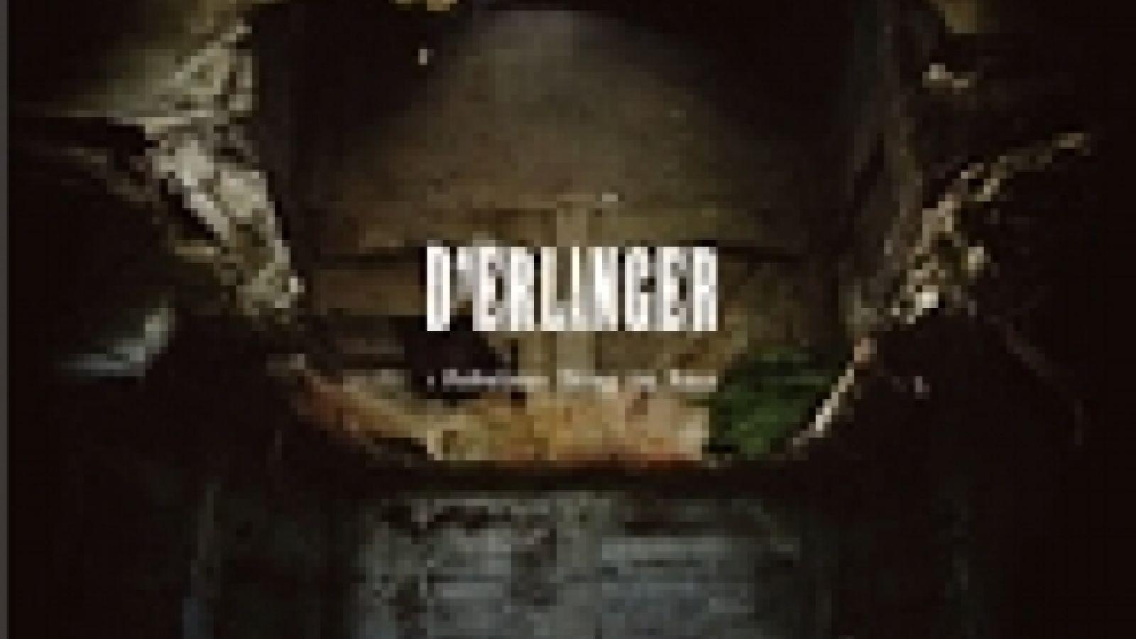New Album from D'ERLANGER ©